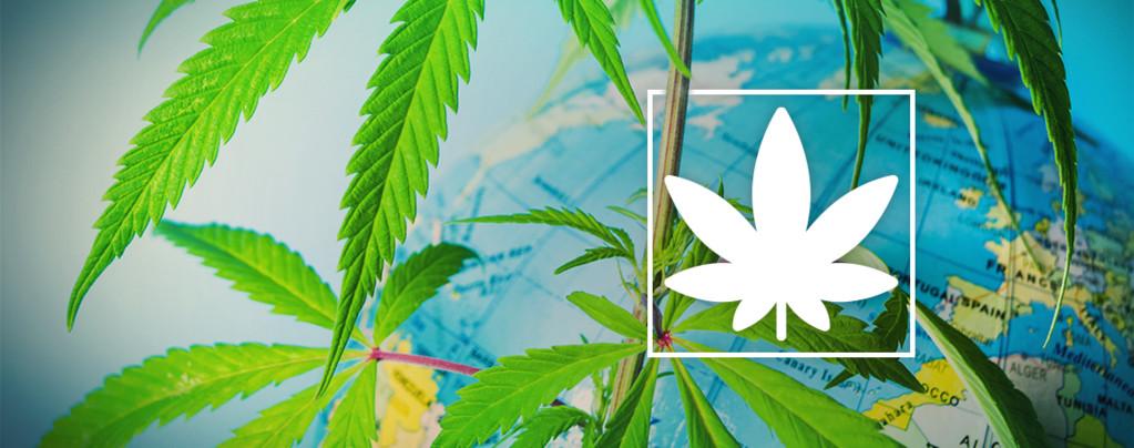 Fumer Légalement Cannabis Europe