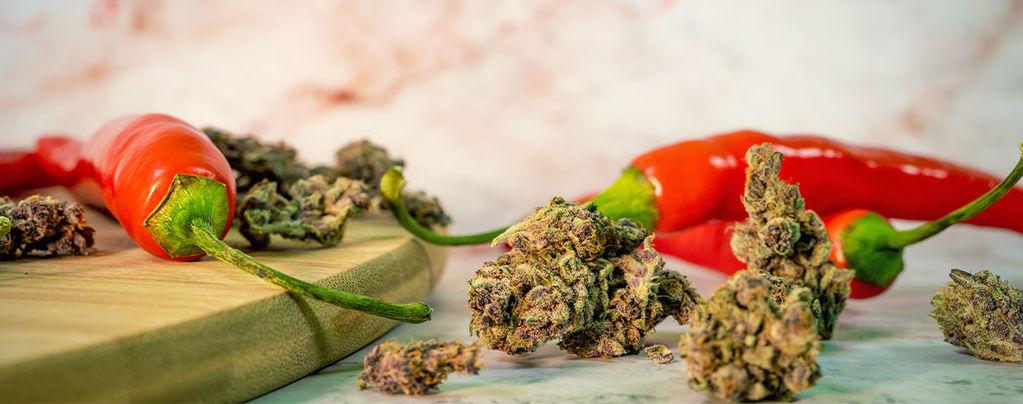 Les Bienfaits Surprenants Du Mélange Du Cannabis Et Des Piments