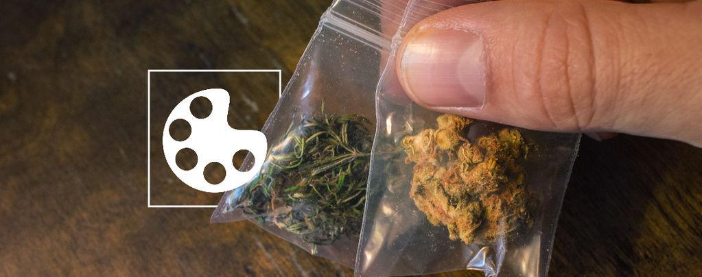 Couleurs Du Cannabis