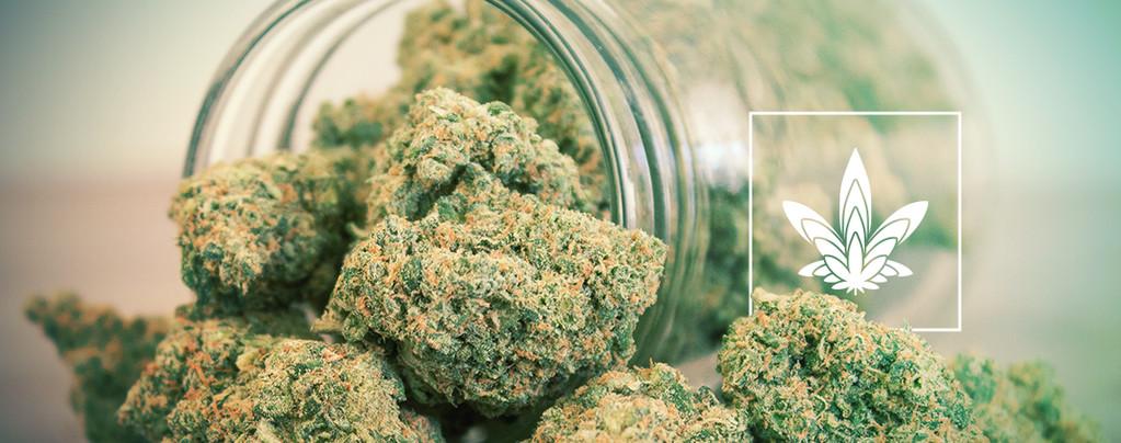 Grosses Cannabis Têtes