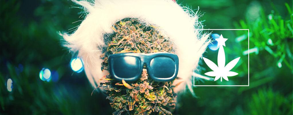 Soirée De Noël À Thème Cannabis