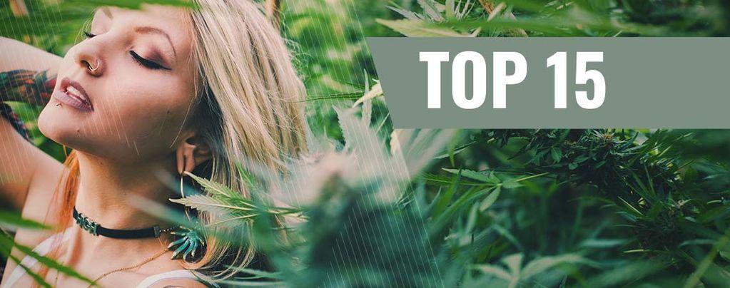Top 15 Des Influenceuses Du Cannabis Sur Instagram
