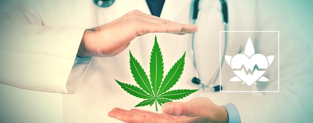 La Meilleure Façon De Consommer Du Cannabis Thérapeutique