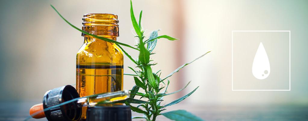 Le Guide Ultime Pour Consommer Des Concentrés De Cannabis