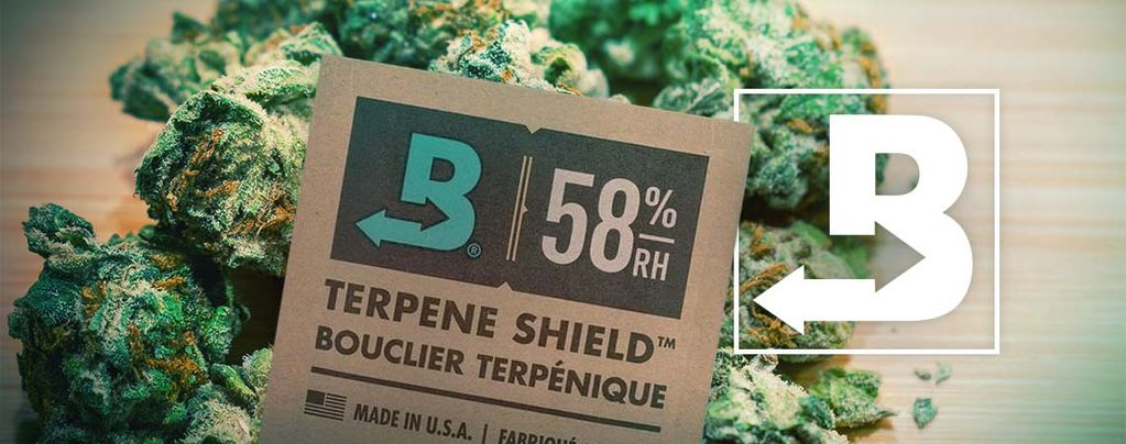 Garder Votre Weed Super-Fraîche Avec Boveda