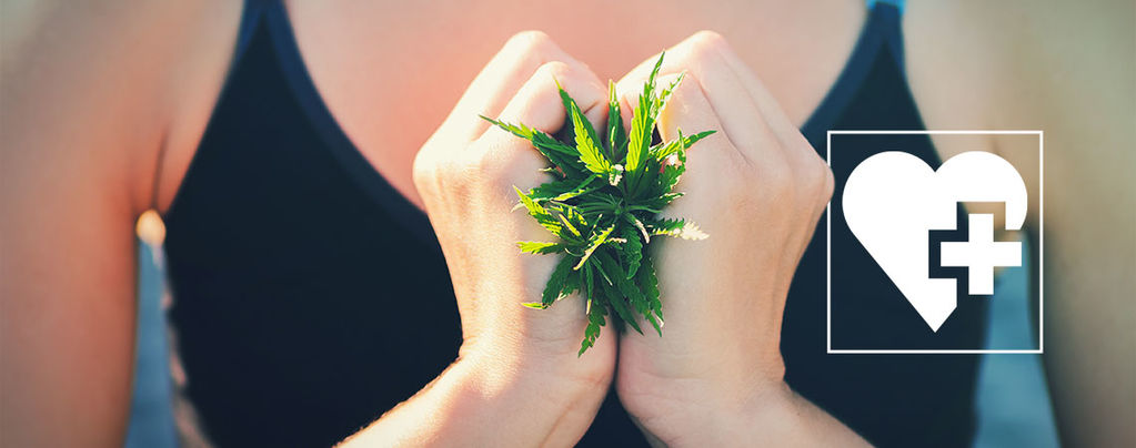 Weed Aider Perdre Poids