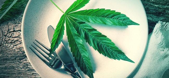 La Feuille De Cannabis Crue : Un Super-Aliment ?