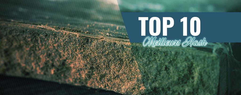 Top 10 Des Meilleurs Hash D'Amsterdam