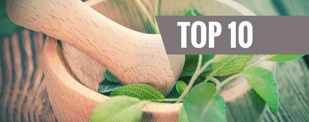 Top 10 Des Enthéogènes