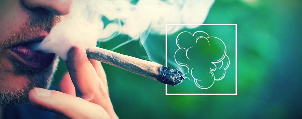 Production De Fumée Et Cannabis