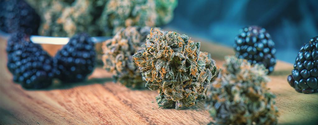 Ajouter De La Saveur À Votre Weed