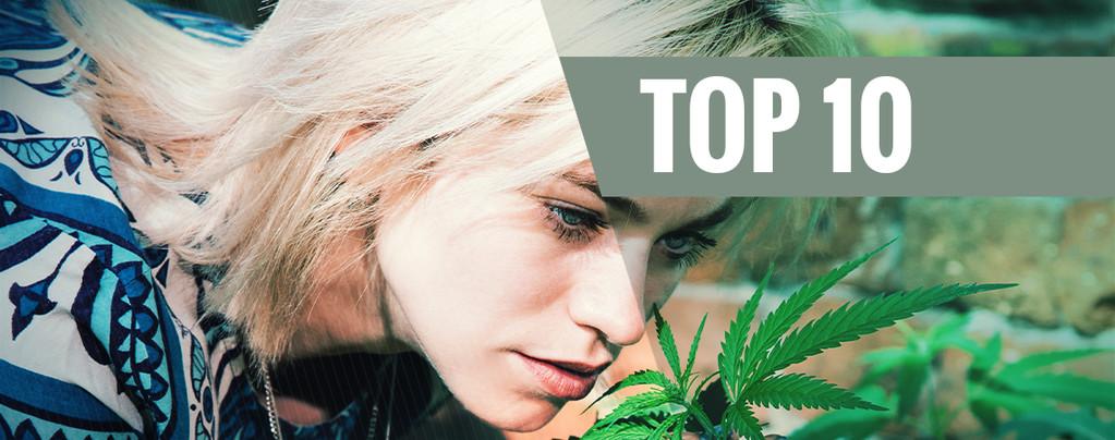 Top 10 des variétés de cannabis