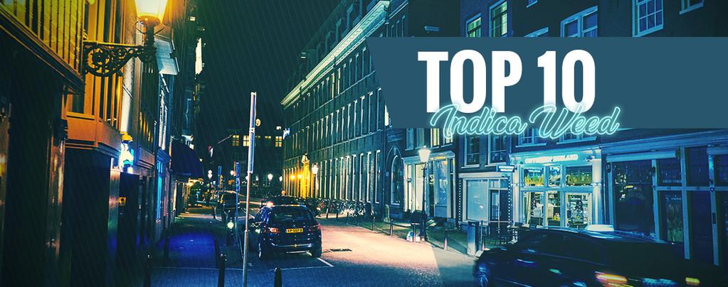 Top 10 Des Coffeeshops D'Amsterdam Avec Les Meilleures Indica