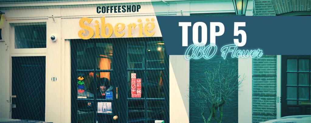 Top 5 Des Coffeeshops Pour Des Fleurs CBD