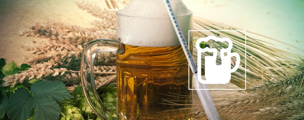 Hydromètre Vinoferm : 3 Échelles (Bière)
