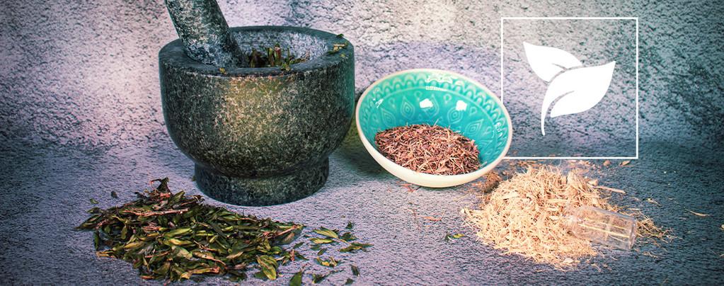 Herbes & Graines