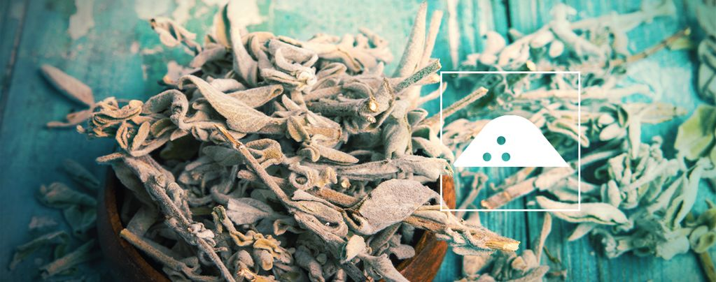 Feuilles De Salvia Séchées