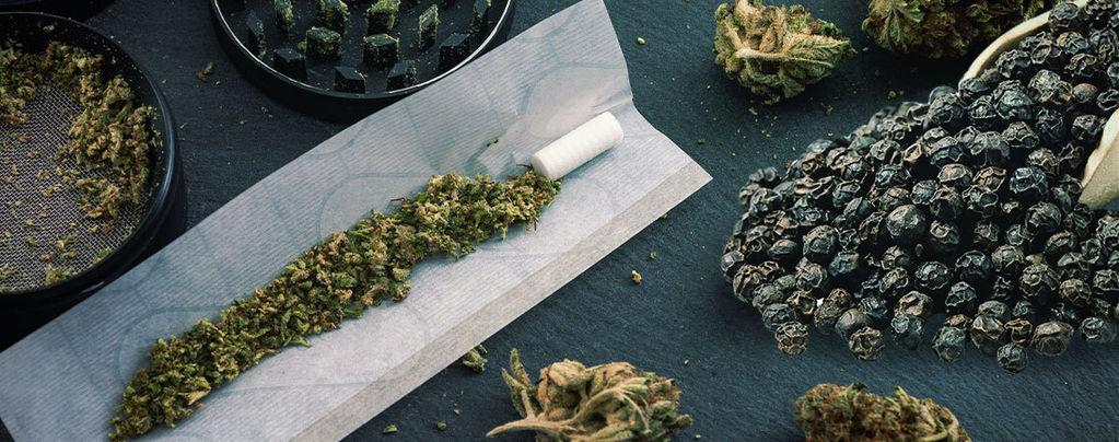 Poivre Noir & Cannabis