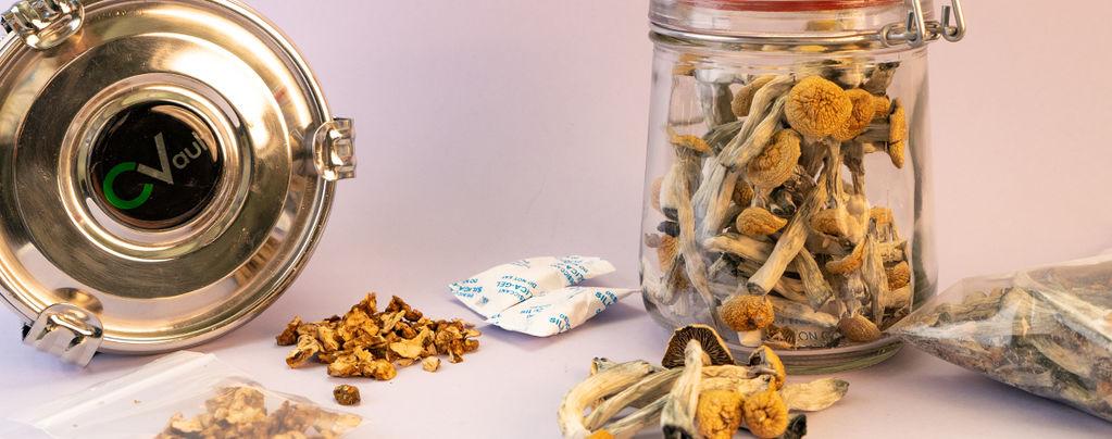 Comment stocker truffes et champignons magiques