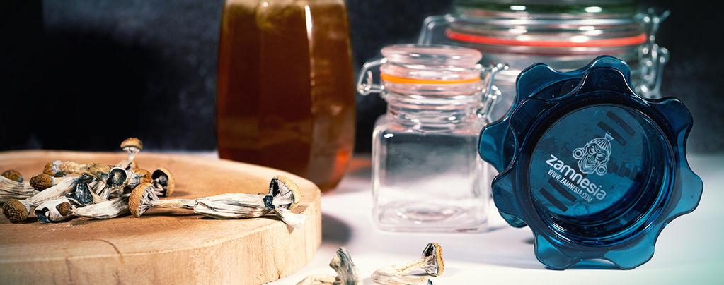 Miel Bleu : Préparer Du Miel Psychédélique Aux Champis Magiques