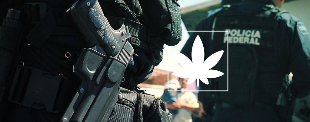 Étude : la guerre contre les drogues est un échec total