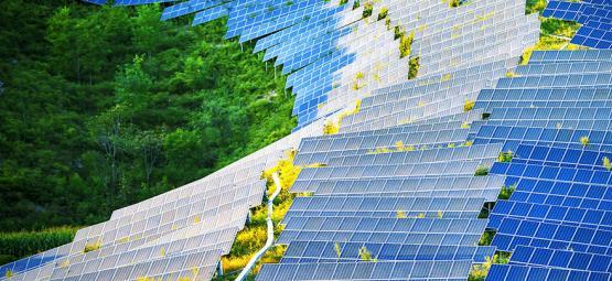 Comment Les Panneaux Solaires Pourraient Révolutionner Les Salles De Culture