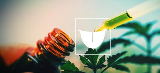 Pourquoi Utiliser Une Teinture De Cannabis En Sublingual Est Mieux