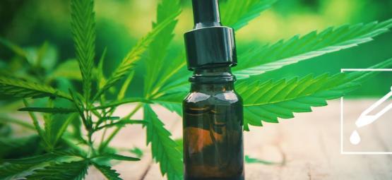 Préparer Une Teinture Au Cannabis : Guide Étape Par Étape
