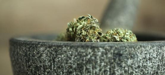 10 Façons d'Effriter le Cannabis Sans Grinder