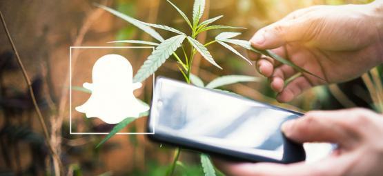 9 Comptes Cannabis À Suivre Sur Snapchat