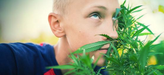 Comment Être Raide Sans Utiliser Du Cannabis