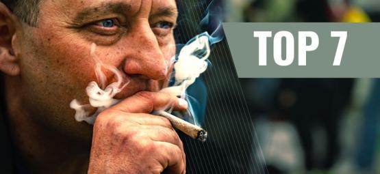 7 Variétés De Cannabis Idéales Pour Booster Motivation Et Productivité