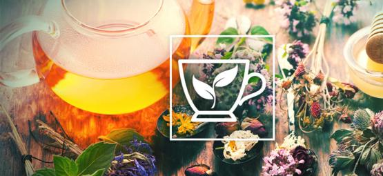 10 Des Meilleures Herbes À Infuser Dans Un Thé