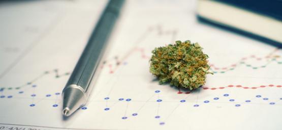 Les Avantages (Et Les Inconvénients) De Consommer du Cannabis Pour Étudier ou S'entraîner