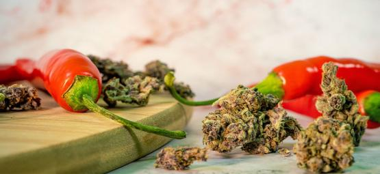 Les Surprenants Bienfaits De La Combinaison Cannabis Et Piment