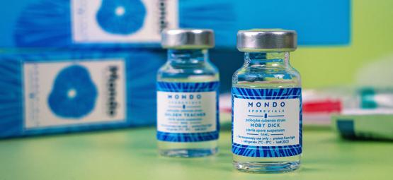 Pourquoi Et Comment Utiliser Un Flacon De Spores