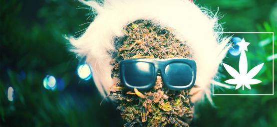 Comment Organiser Une Soirée De Noël À Thème Cannabis