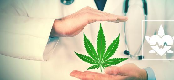 Quelle Est La Meilleure Façon De Consommer Du Cannabis Thérapeutique ?