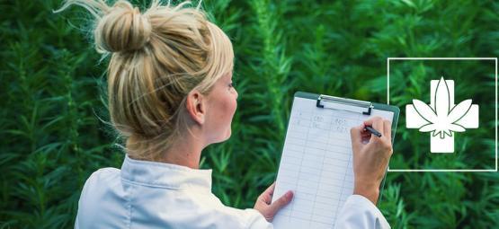 Comment Choisir La Bonne Variété Thérapeutique Faites Pour Vous