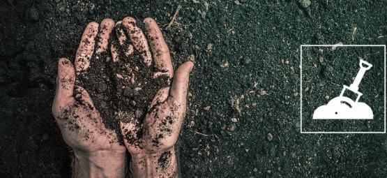 C'est Quoi La Terre Organique Vivante Recyclée (ROLS), Comment En Faire?