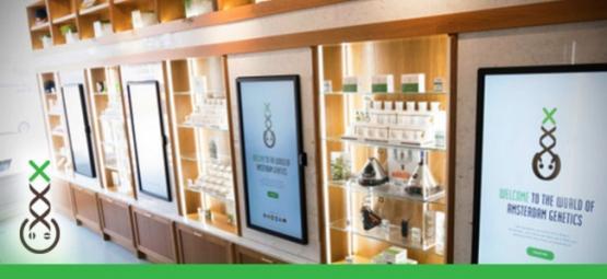 Centre D'Information Des Coffeeshop