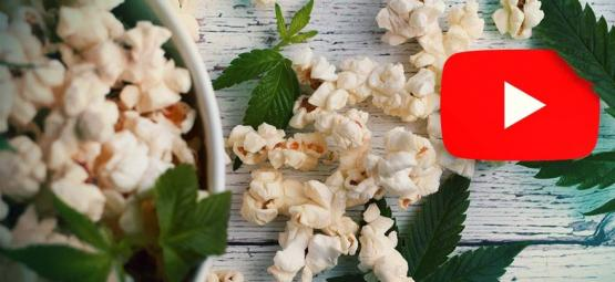 Top 10 Des Vidéos Youtube Drôles À Regarder En Planant