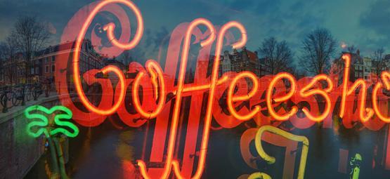 Visites De Zamnesia Dans Les Coffeeshops D'Amsterdam