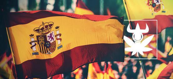 Top 10 Des Variétés Des Cannabis Clubs Espagnols