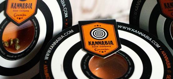 Top 10 Des Variétés De Cannabis Par Kannabia Seeds