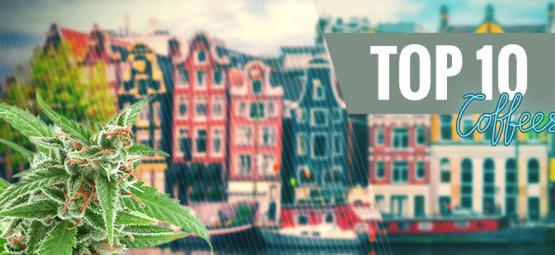 Les 10 Meilleures Variétés De Cannabis De Coffeeshop