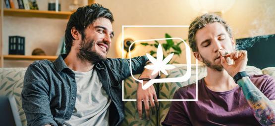6 Variétés De Cannabis Pour Vous Rendre Bavard Et Sociable
