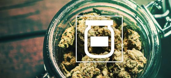 Comment Éviter La Moisissure Dans Votre Réserve De Cannabis