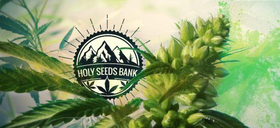 Le Pollen Holy Seeds Bank