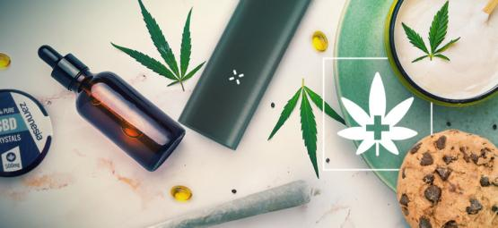 L'Importance De La Biodisponibilité Du Cannabis Médical